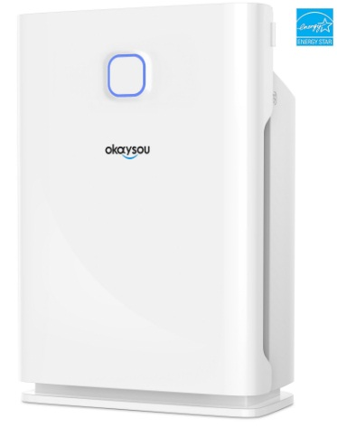 Okaysou AirMax10L Pro Smart Air Purifier Review And Giveaway