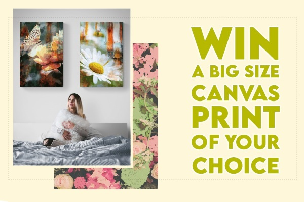 Appeso Wall Art Experts Grand Opening Giveaway